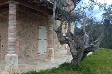 primavera bucolica - spring time in tuscany countryside - gh lazzerini, italy